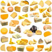 large page of cheese collection on white background