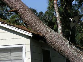 stock photo of katrina  - a house damaged by hurricane katrina - JPG