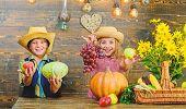 Elementary School Fall Festival Idea. Kids Girl Boy Wear Hat Celebrate Harvest Festival Rustic Style poster