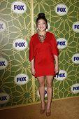 LOS ANGELES - JAN 8:  Jenna Ushkowitz at the FOX All Star Winter TCA Party at Castle Green on January 8, 2012 in Pasadena, California.