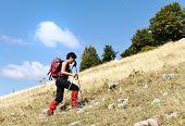 Walking uphill woman trekking and hiking mountaineering