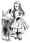 Alice is picking up a small bottle. Engraving by John Tenniel (United Kingdom, 1872). Illustration f