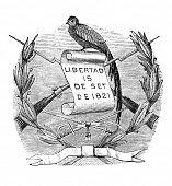 das alte Wappen der Republik Guatemala (Mittelamerika). Kupferstich von Alwin Zschiesche publi