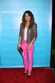 LOS ANGELES - JAN 6:  Sarah Shahi arrives at the NBC Universal All-Star Winter TCA Party at The Athe