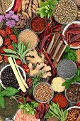 Spice and herb food seasoning collection with fresh and dried spices and herbs Top view. poster