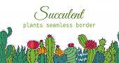 Succulents Seamless Border Pattern Cacti Green Plants Vector Illustration. Nature Botanical Housepla poster
