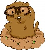 picture of groundhog  - Illustration of a Groundhog Wearing Glasses - JPG