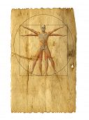 Concept or conceptual vitruvian human body drawing on old paper or book background as metaphor to anatomy,biology,Leonardo,classic,anatomical,circle,symbol,revival,proportion, skeleton or manuscript
