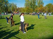 SUMY, UKRAINE - OCTOBER 7: Unidentified participants compete in regional dog show on October 7, 2012