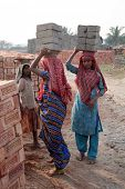 SARBERIA,INDIA, JANUARY 16: Brick field workers carrying complete finish brick from the kiln on Janu