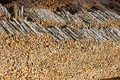 Renewable resource - raw timber materials ready for transportation in dock