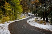 Autumn Country Road With A Touch Of Winter