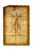 Concept or conceptual vitruvian human body drawing on old paper or book background as metaphor to anatomy,biology,Leonardo,classic,anatomical,circle,symbol ,revival,proportion , skeleton or manuscript