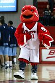 NEW YORK-NOV 3: St. John's Red Storm mascot performs at the game against Sonoma State Seawolves at Carnesecca Arena on November 3, 2012 in Jamaica, Queens, New York.