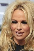 LOS ANGELES - NOV 2: Pamela Anderson at the Sea Shepard's Operation Zero Tolerance Antarctic whale d