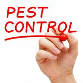 stock photo of pest control  - Hand writing Pest Control with red marker on transparent wipe board - JPG