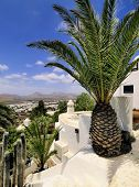 Lag-o-mar, Lanzarote