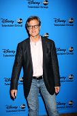 LOS ANGELES - AUG 4:  Henry Czerny arrives at the ABC Summer 2013 TCA Party at the Beverly Hilton Ho