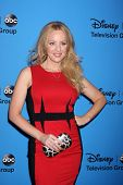 LOS ANGELES - AUG 4:  Wendi McLendon-Covey arrives at the ABC Summer 2013 TCA Party at the Beverly H