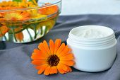 Calendula Cosmetic Cream And Flowers