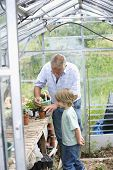 Senior man with grandson planting in greenhouse