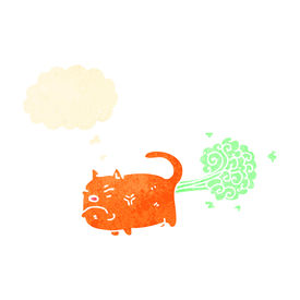 foto of fart  - cartoon farting cat - JPG