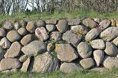 pic of fieldstone-wall  - The Frisian stone wall is a dry stone wall typical for Northern Germany - JPG