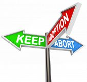 Keep Adoption Abort Three Pregnancy Options Expectant Mother