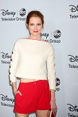 LOS ANGELES - JAN 17:  Darby Stanchfield at the Disney-ABC Television Group 2014 Winter Press Tour P