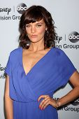 LOS ANGELES - JAN 17:  Frankie Shaw at the Disney-ABC Television Group 2014 Winter Press Tour Party