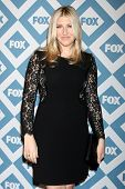 LOS ANGELES - Jan 13:  Tara Summers at the  FOX TCA Winter 2014 Party at The Langham Huntington Hote