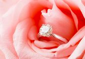 Pink Rose and diamond ring nestled inside