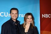 LOS ANGELES - JAN 19:  Jesse Lee Soffer, Sophia Bush at the NBC TCA 2014 Winter Press Tour at The La