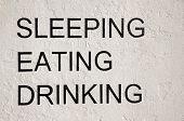 Sleeping eating drinking written on wall