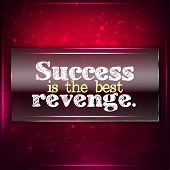 picture of revenge  - Success is the best revenge - JPG