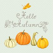 Autumn  background with pumpkins and maple leaf.