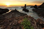 Cathedral Rock At Sunrise Nsw Australia