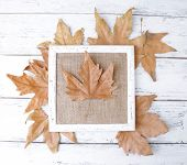Wooden frame with dried leaves on wooden background