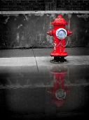 Water Fire Hydrant Red