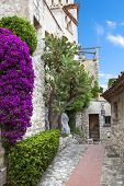 Winding narrow stone streets in Eze near Nice, France.  Beautiful bougainvillea.