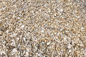 Wood chips for alternative heating and as background