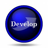 Develop Icon