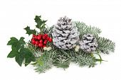 Winter and christmas decoration with holly, mistletoe, pine cones, ivy, and  fir leaf sprigs over wh