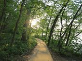 Sun Starting to set along the River Bluff Trail at Starved Rock