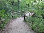 Iron Walkway Bridge at Wildcat Canyon in Spring at Starved Rock