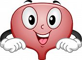 pic of bladder  - Mascot Illustration Featuring a Happy Bladder - JPG