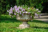 vase park flowers