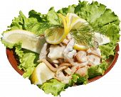image of lenten  - Fresh and tasty salad with chicken meat and sauce - JPG