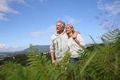 Senior couple walking in countryside, scenery