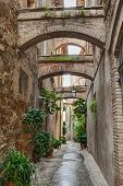Antique alley in Bevagna, Italy